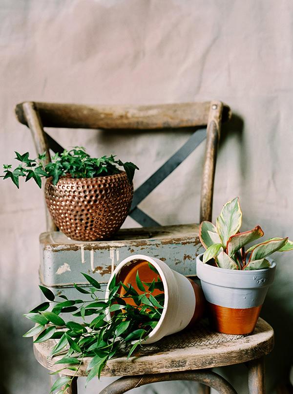 Urban Boho Wedding plant display idea
