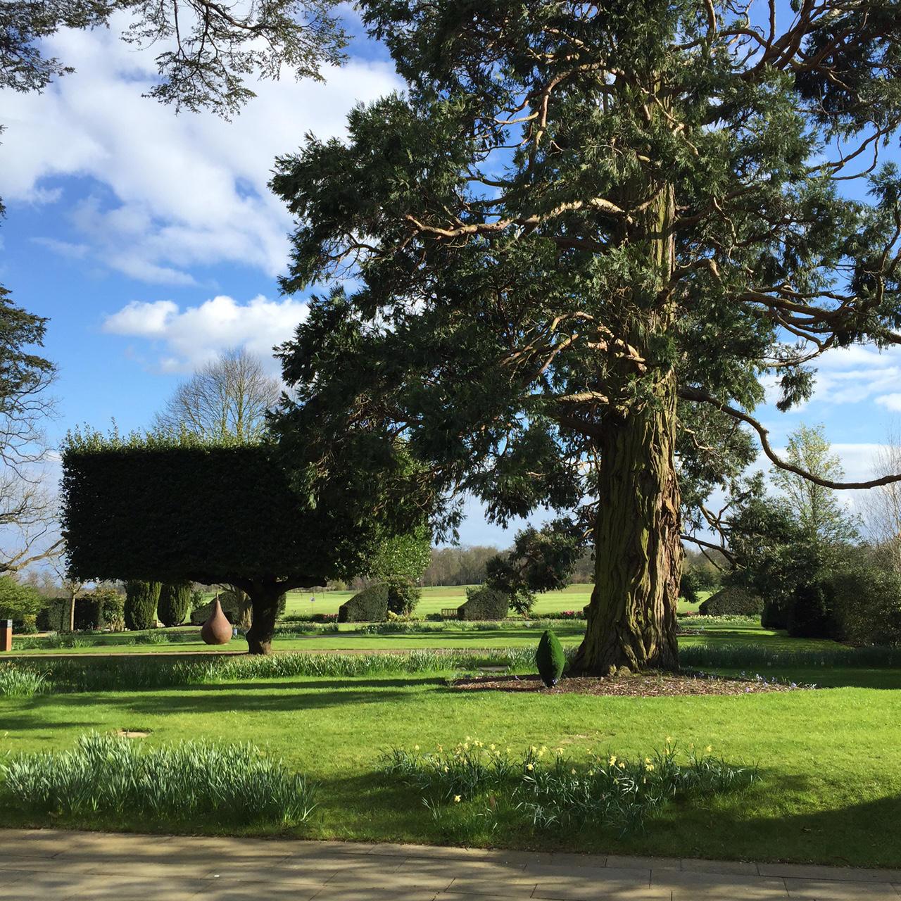 The Grove Hotel Garden View