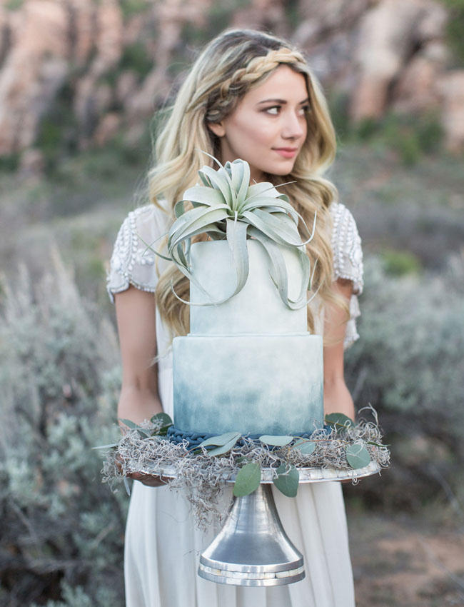 Coachella Festival Wedding airplant cake styling