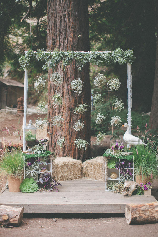 wedding succulents airplant display styling