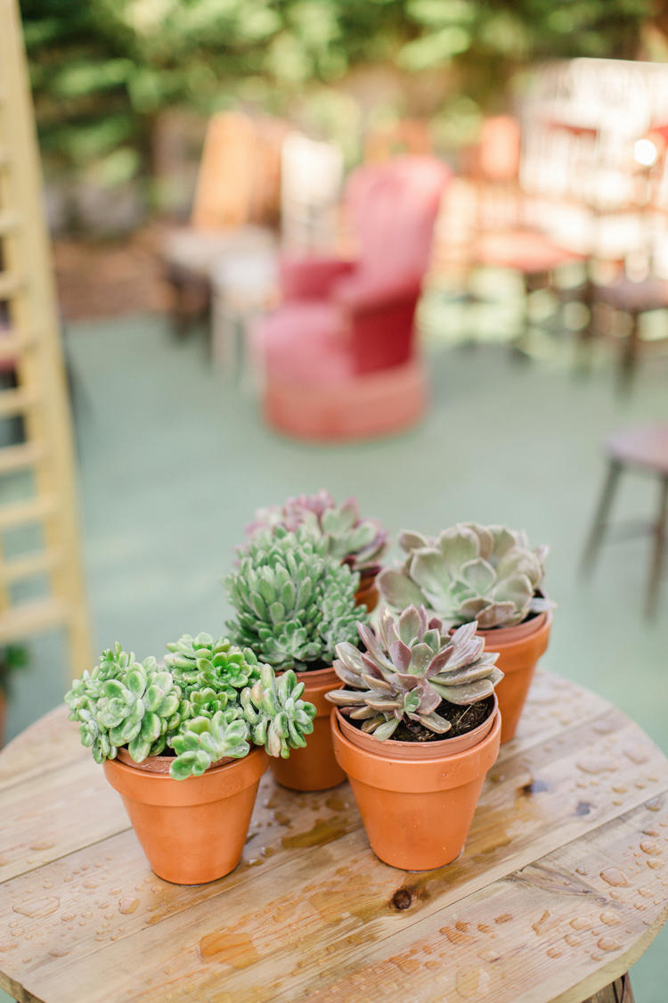 10 Ways to use Succulents at Weddings